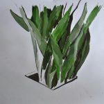 bruno juliano (10)